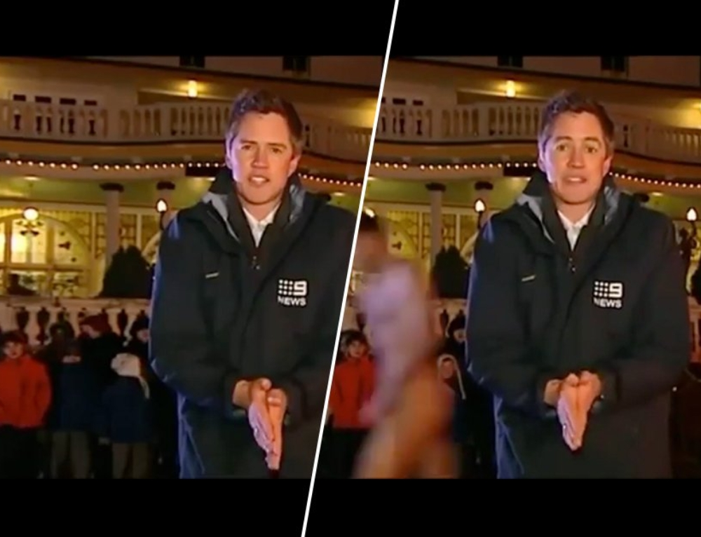 Live TV bloopers, the GIF that keeps on GIF-ing (19 Gifs)